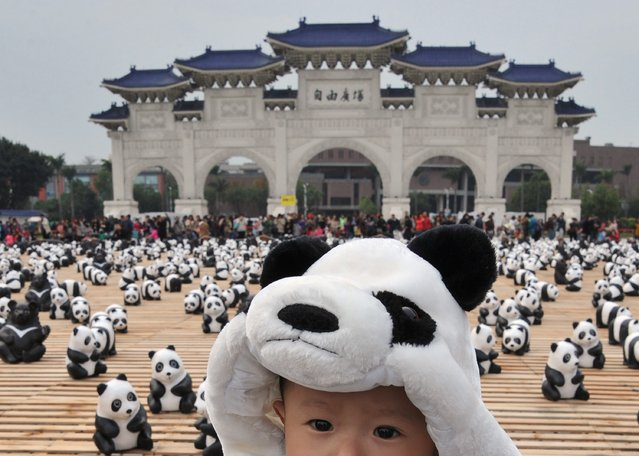 """A child wears a panda outfit among 200 paper Formosan Black Bears surrounded by paper pandas at an exhibition called """"Pandas on Tour"""" at the Liberty Square of National Chiang Kai-shek Memorial Hall in Taipei on March 14, 2014. (Photo by Mandy Cheng/AFP Photo)"""