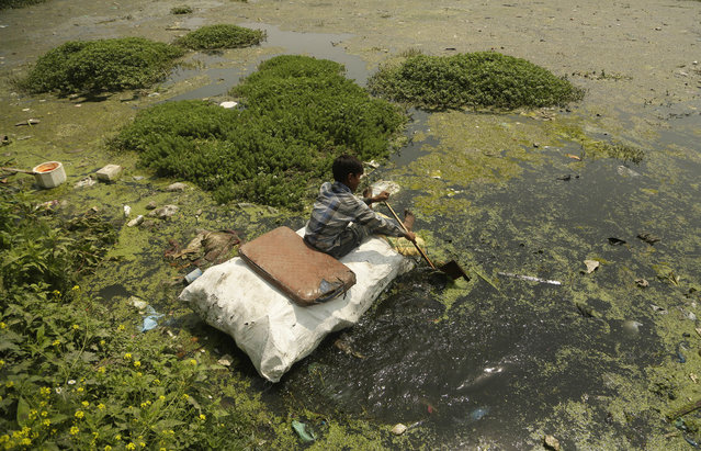 A young boy collects plastic and other recyclable material from the polluted waters of Babdemb lake on World Environment Day in Srinagar, Indian controlled Kashmir, Tuesday, June 5, 2018. (Photo by Mukhtar Khan/AP Photo)