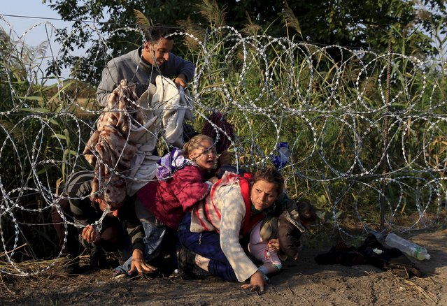 Syrian migrants cross under a fence into Hungary at the border with Serbia, near Roszke, August 27, 2015. Bernadette Szabo: Rail tracks, unguarded, line the border with Serbia. Most refugees used the tracks, a few miles long, as a highway into Hungary. I arrived at the border every day at 6.00 AM. The crossing was the only spot still not blocked. A triple coil of razor wire was up everywhere else as Hungary prepared to fence off the border. The rail crossing was easy enough but many migrants chose to jump the fence to avoid the police waiting a few hundred metres inside. (Photo by Bernardett Szabo/Reuters)