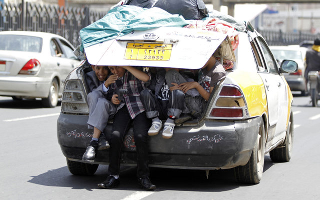 Boys sit in the boot of a car in Sanaa August 8, 2013. (Photo by Mohamed al-Sayaghi/Reuters)