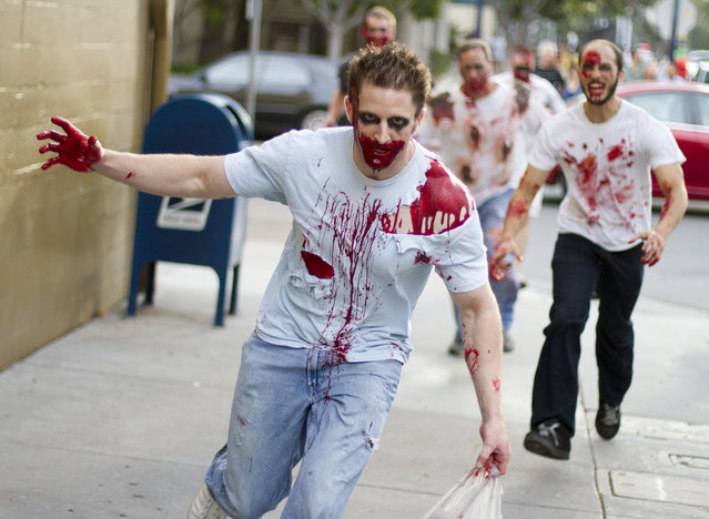 """""""Zombies on the loose!"""" (Photo and caption by Nathan Rupert)"""