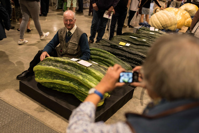 Grower Peter Glazebrook poses for a photograph with his marrow, weighing 65.3kg, which won first prize in the heaviest marrow category of the giant vegetable competition, on the first day of the Harrogate Autumn Flower Show held at the Great Yorkshire Showground, in Harrogate, northern England, on September 13, 2019. (Photo by Oli Scarff/AFP Photo)