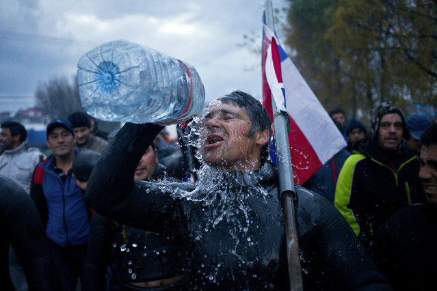 A diver throws water on his face during a protest march by shellfish divers in Chiloe Island, Chile, Thursday, May 12, 2016. The government has declared an emergency zone along Chile's south as it deals with the algae bloom known as red tide, which kills fish with a toxin that paralyzes the central nervous system, and small-scale fishermen are demanding compensation. (Photo by Esteban Felix/AP Photo)