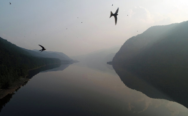 Birds fly over the Yenisei River in the Siberian Taiga area shrouded in smoke from wildfire, outside the Siberian village of Sizaya in Krasnoyarsk region, Russia on July 22, 2019. (Photo by Ilya Naymushin/Reuters)