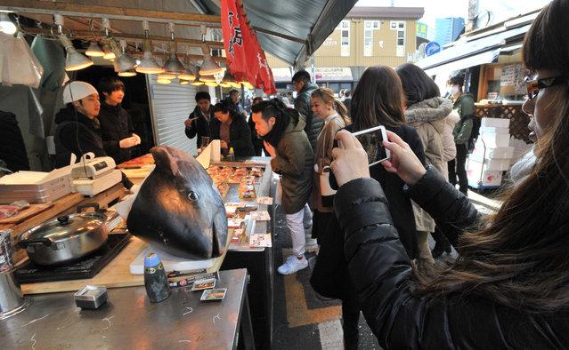A tourist takes a photo of a tuna head at Tokyo's Tsukiji market on January 19, 2017. (Photo by Yoshiaki Miura)