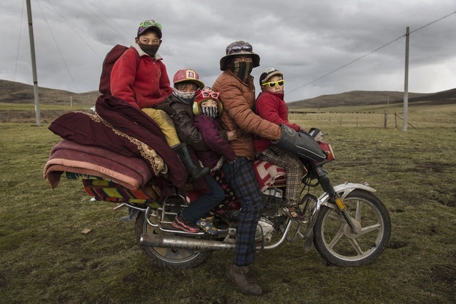 A Tibetan nomad family crowds on a motorcycle at a camp for cordycep pickers on May 21, 2016 near Sershul on the Tibetan Plateau in the Garze Tibetan Autonomous Prefecture of Sichuan province. (Photo by Kevin Frayer/Getty Images)