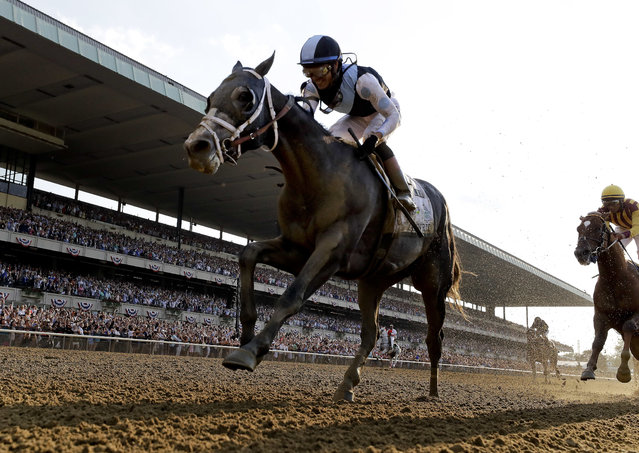 Tapwrit, ridden by Jose Ortiz crosses the finish line to win the 149th running of the Belmont Stakes horse race, Saturday, June 10, 2017, in Elmont, N.Y. Irish War Cry, right, finished second. (Photo by Julio Cortez/AP Photo)