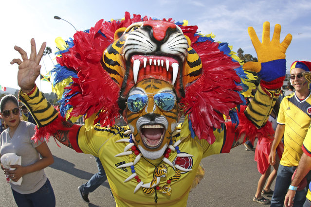 A fan of Colombia poses for photos prior a group A match between Colombia and Paraguay at Rose Bowl Stadium as part of Copa America Centenario US 2016 on June 07, 2016 in Pasadena, California, US. (Photo by Omar Vega/LatinContent/Getty Images)