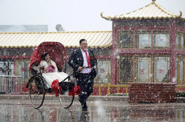 A man pulls a rickshaw carrying his wife in a wedding gown during their wedding ceremony amid snowfall in Weihai, Shandong province March 30, 2013. (Photo by Reuters/Stringer)