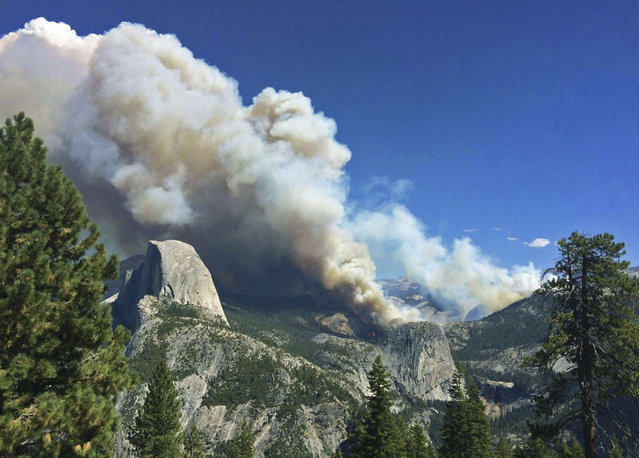 The Meadow Fire burns in Yosemite National Park, California in this handout photo released to Reuters September 8, 2014. (Photo by Jeffrey Trust/Reuters/National Park Service)