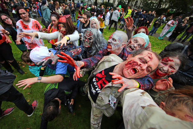 Participants dressed up as Zombies wandering through London on a pub crawl for World Zombie Day in aid of homeless charity St. Mungos World Zombie Day charity pub crawl, London, U.K. on October 7, 2017. (Photo by Paul Brown/Rex Features/Shutterstock)