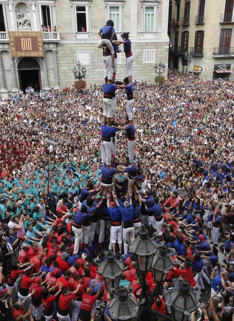 """""""Castellers de la Vila de Gracia"""" form a human tower during a demonstration at the festival of the patron saint of Barcelona """"The Virgin of Mercy"""" at Sant Jaume square in Barcelona September 24, 2014. (Photo by Gustau Nacarino/Reuters)"""