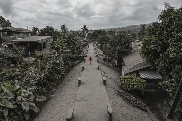 Houses and trees are seen covered in thick ash following volcanic eruptions from Mount Mayon in Guinobatan, Albay province, Philippines, January 24, 2018. (Photo by Ezra Acayan/NurPhoto via Getty Images)