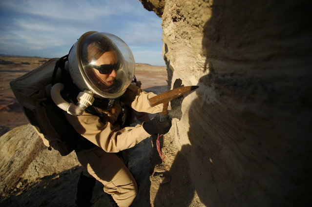 Melissa Battler, a geologist and commander of Crew 125 EuroMoonMars B mission, collects geologic samples for study at the Mars Desert Research Station (MDRS) in the Utah desert March 2, 2013. The MDRS aims to investigate the feasibility of a human exploration of Mars and uses the Utah desert's Mars-like terrain to simulate working conditions on the red planet. Scientists, students and enthusiasts work together developing field tactics and studying the terrain. All outdoor exploration is done wearing simulated spacesuits and carrying air supply packs and crews live together in a small communication base with limited amounts of electricity, food, oxygen and water. Everything needed to survive must be produced, fixed and replaced on site. (Photo by Jim Urquhart/Reuters)