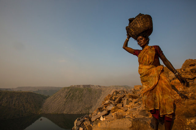 An illegal coal scavenger retrieves a large block of coal from a working open-cut coal mine in eastern India. The climb out of the mine is treacherous with a precipitous drop down one side likely to lead to death. Jharkhand, India, 2013. (Photo by Hugh Brown/South West News Service)
