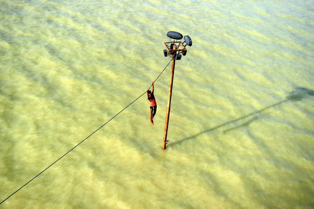 An Indian youth dangles from a power line before diving into the floodwaters of an overflowing Ganges river in Allahabad on August 6, 2013. The monsoon, which covers the subcontinent from June to September and usually brings flooding, accounts for about 80 percent of India's annual rainfall. (Photo by Sanjay Kanojia/AFP Photo)