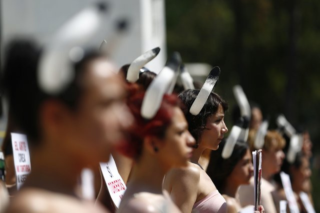 Activists from the animal rights group AnimaNaturalis take part in a demonstration against bullfights at the Hemiciclo de Juarez monument in Mexico City, February 8, 2015. (Photo by Edgard Garrido/Reuters)