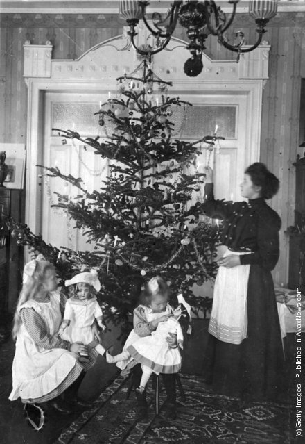1905: A Christmas tree in an Edwardian parlour