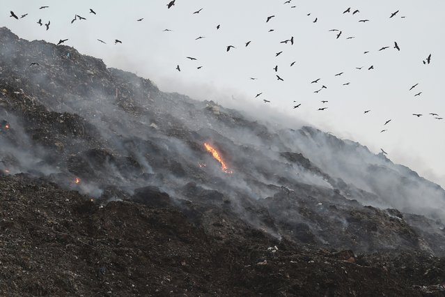 Birds fly as smoke billows from a fire in a landfill on the outskirts of Ahmedabad on November 4, 2019. (Photo by Sam Panthaky/AFP Photo)