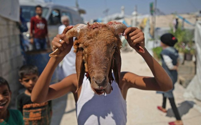 """A Syrian boy plays with the head of a sacrificed sheep at a DIP camp for Interally Displaced Persons near the town of Aqrabat in Syria's northern Idlib province on August 12, 2019. Known as the """"big"""" festival, Eid Al-Adha is celebrated each year by Muslims sacrificing various animals according to religious traditions, including cows, camels, goats and sheep. The festival marks the end of the Hajj pilgrimage to Mecca and commemorates Prophet Abraham's readiness to sacrifice his son to show obedience to God. (Photo by Aaref Watad/AFP Photo)"""