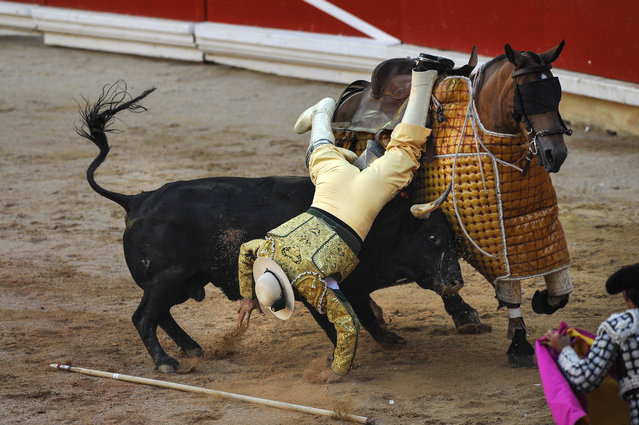 A Picador (bull-fighter assistant), falls as his horse is being charged by a Victoriano del Rio Cortes's bull, during the San Fermin Festival, in Pamplona, northern Spain, Tuesday, July 12, 2016. Revelers from around the world flock to Pamplona every year to take part in the eight days of the running of the bulls. (Photo by Alvaro Barrientos/AP Photo)