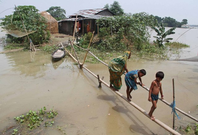 Villagers use a makeshift bamboo bridge to move across flooded areas of Morigaon district in the northeastern Indian state of Assam August 20, 2014. The latest heavy rains have caused landslides and floods in many parts of India and Nepal, where at least 90 people have been killed since Thursday. (Photo by Reuters/Stringer)