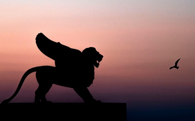 A view shows a Lion's sculpture against a twilight sky at Venice Lido on the fourth day of the 77th Venice Film Festival, on September 5, 2020, during the COVID-19 infection, caused by the novel coronavirus. (Photo by Tiziana Fabi/AFP Photo)