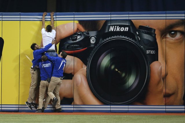 A trespasser tries to jump the outfield wall as security guards pull him down during the Toronto Blue Jays MLB game against the Boston Red Sox on April 7, 2013 at Rogers Centre in Toronto, Ontario, Canada. (Photo by Tom Szczerbowski/AFP Photo)