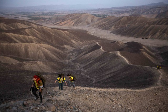 "Greenpeace activists walk towards the historic landmark of the hummingbird in Nazca in Peru, Monday, December 8, 2014. Greenpeace activists from Brazil, Argentina, Chile, Spain, Germany, Italy and Austria displayed the message, ""Time for Change: The Future is Renewable"" which can be viewed from the sky, during the climate talks in Peru, to honor the Nazca people, whose ancient geoglyphs are one of the countires cultural landmarks. (Photo by Rodrigo Abd/AP Photo)"