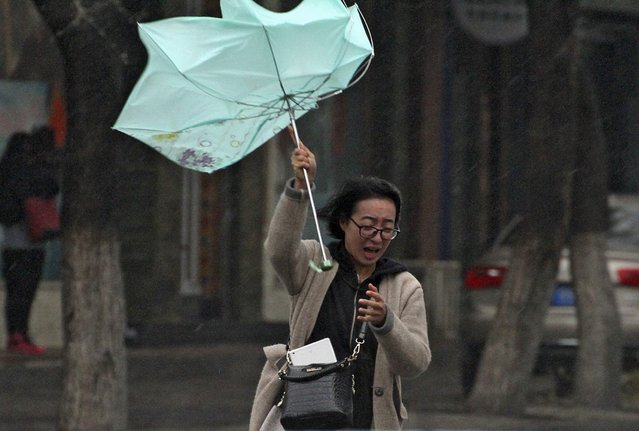 A woman's umbrella is blown by wind during a heavy rain in Yantai, Shandong province, November 6, 2015. (Photo by Reuters/Stringer)