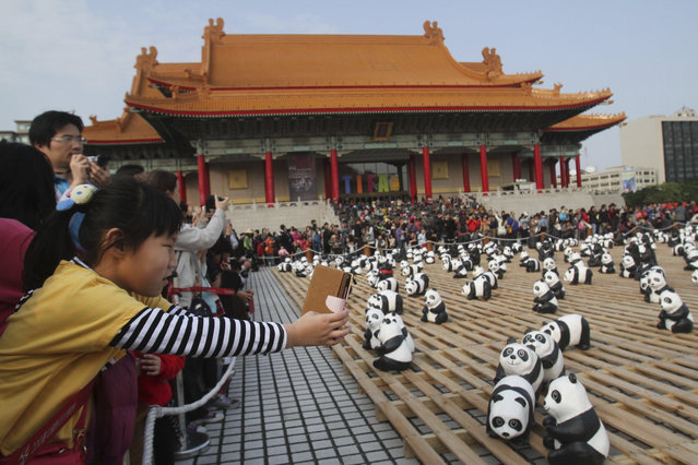 """Visitors take photowith the part of the 1,600 paper pandas, and 200 paper Taiwanese bears, created by French artist Paulo Grangeon, in front of the Chiang Kai-shek memorial Hall during the exhibition called """"Pandas on Tour"""" in Taipei, Taiwan, Saturday, March 15, 2014. (Photo by Chiang Ying-ying/AP Photo)"""