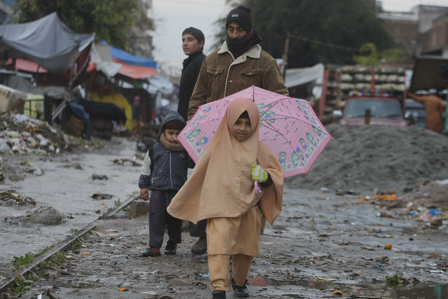 A Pakistani school girl walks on her way to school in the rain in Peshawar, Pakistan, Thursday, January 22, 2015. (Photo by Mohammad Sajjad/AP Photo)