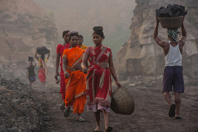 Illegal coal scavengers descend into a working open-cut coal mine in eastern India. For an hour each morning in between shift change when the large-scale earthmoving equipment stops working these illegal coal scavengers work rapidly to retrieve as many large blocks as they can. Jharkhand, India, 2013. (Photo by Hugh Brown/South West News Service)