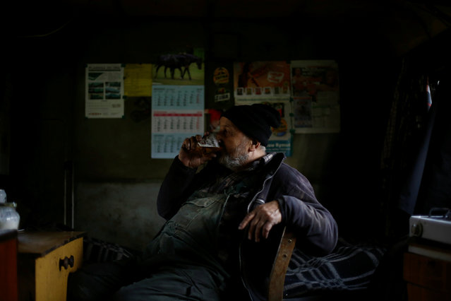 Charcoal burner Zygmunt Furdygiel drinks beer inside his hut at a charcoal making site in the forest of Bieszczady Mountains, near Baligrod village, Poland November 5, 2016. (Photo by Kacper Pempel/Reuters)