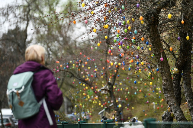 A woman looks at colourful Easter eggs hanging in a tree on Reussallee street in Berlin, Germany, April 1, 2021. (Photo by Annegret Hilse/Reuters)