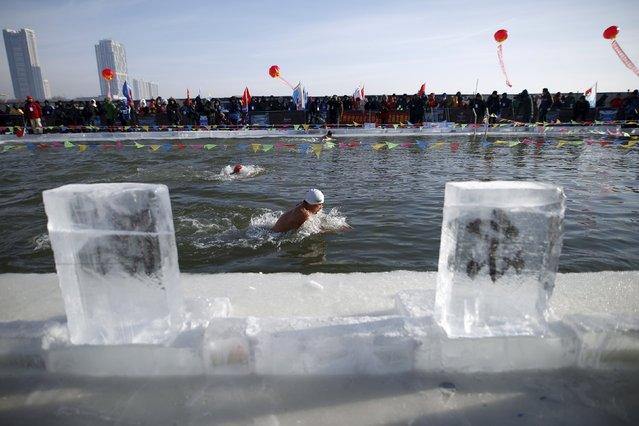 A swimmer competes in a pool carved from thick ice covering the Songhua River during the Harbin Ice Swimming Competition in the northern city of Harbin, Heilongjiang province, January 5, 2016. (Photo by Aly Song/Reuters)