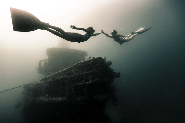 Two free divers swim near to a shipwreck in the Caribbean. (Photo by Alex Voyer/Caters News Agency)