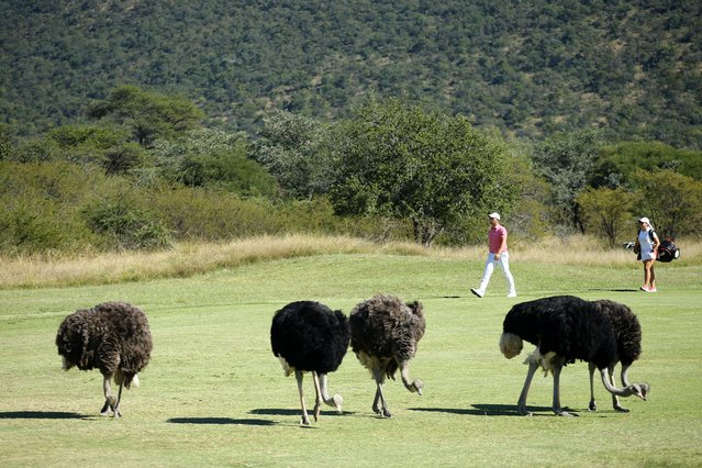 Daniel van Tonder of South Africa walks on the 3ed fairway during Day Four of the Limpopo Championship at Euphoria Golf Club, Modimolle on April 25, 2021 in Johannesburg, South Africa. (Photo by Luke Walker/Getty Images)