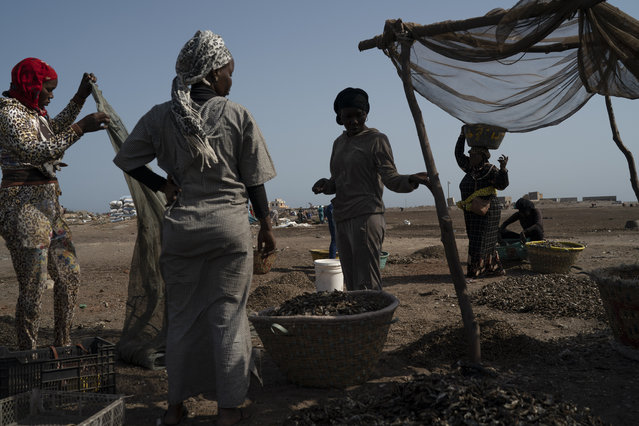 Fatou Samba, right, president of the association of female fish processors, carries on her head a basket filled with the remains of processed fish at Bargny beach, some 35 kilometers (22 miles) east of Dakar, Senegal, Sunday, April 25, 2021. Samba is a town councilor and president of the Association of Women Processors of Fish Products, and she's testified about the challenges in artisanal fishing. She hopes to stop much of the expansion of big industry as fishmeal companies scoop up fish and send the product to Europe and Asia. (Photo by Leo Correa/AP Photo)