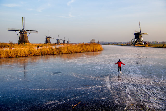 A skater takes to the ice of a frozen canal in Kinderdijk, The Netherlands onJanuary 22, 2017. (Photo by Action Press/Rex Features/Shutterstock)