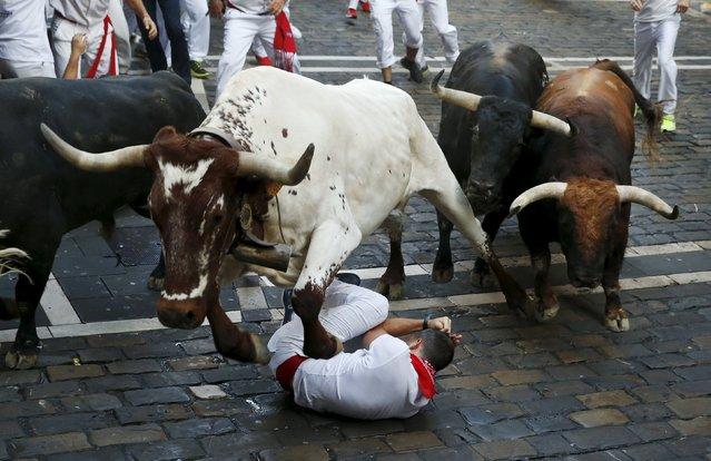 A steer jumps over a fallen runner as two Jandilla fighting bulls follow behind at the Mercaderes curve during the first running of the bulls of the San Fermin festival in Pamplona, northern Spain, July 7, 2015. (Photo by Susana Vera/Reuters)