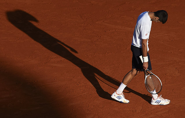 Novak Djokovic of Serbia reacts during the men's singles quarter-final match against David Goffin of Belgium on day six of the ATP Monte Carlo Rolex Masters Tennis at Monte-Carlo Sporting Club on April 21, 2017 in Monte-Carlo, Monaco. (Photo by fotopress/Getty Images)