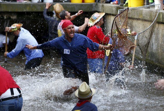 Fisherman Dominik Peller reacts as he catches a trout in a small river while celebrating Fischertag (Fisherman's Day) in downtown Memmingen, southern Germany, July 25, 2015. (Photo by Michaela Rehle/Reuters)