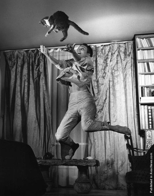 American actress Jean Dorothy Seberg with cat, 1959. (Photo by Philippe Halsman)