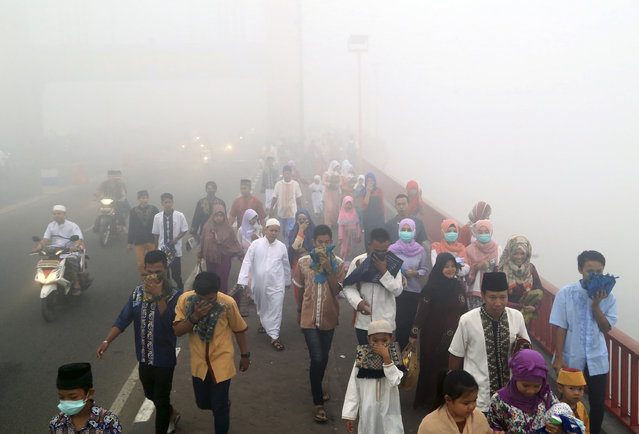 Muslims cover their mouths and noses from the haze from wildfires as they walk to attend a morning prayer marking the Eid al-Adha in Palembang, South Sumatra, Indonesia, Thursday, September 24, 2015. Slash-and-burn practices destroy huge areas of Indonesian forest every summer during the dry season, creating haze that blankets parts of the archipelago and neighboring Malaysia and Singapore. (Photo by AP Photo)
