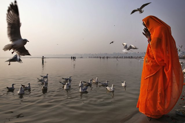 A Hindu devotee prays on the banks of the River Ganges in Allahabad, India, Friday, November 21, 2014. Allahabad, on the confluence of the rivers Ganges, Yamuna and the mythical Saraswathi, is one of Hinduism's important centers. (Photo by Rajesh Kumar Singh/AP Photo)