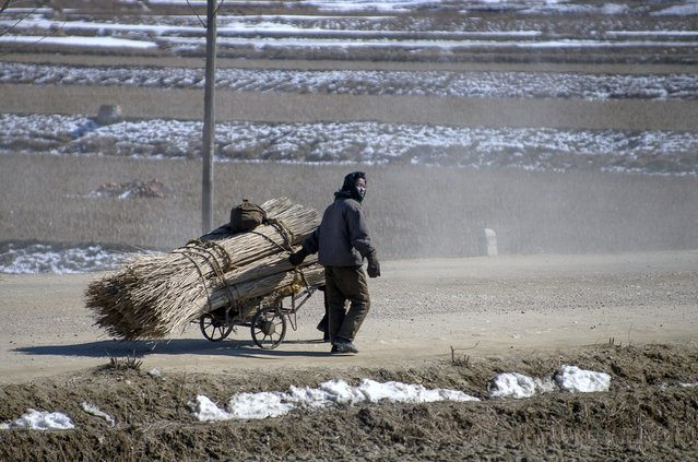 A woman walks through the North Korean countryside in February 2012, Feburary 2012. (Eric Testroete)
