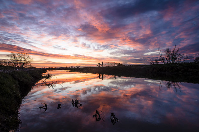 The sun rises over the River Brue on the Somerset Levels as temperatures in parts of the south west drop below freezing, on January, 20, 2015. (Photo by Ben Birchall/PA Wire)