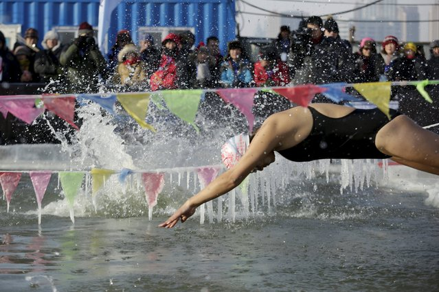 A swimmer dives into a pool carved from thick ice covering the Songhua River during the Harbin Ice Swimming Competition in the northern city of Harbin, Heilongjiang province, January 5, 2016. (Photo by Aly Song/Reuters)