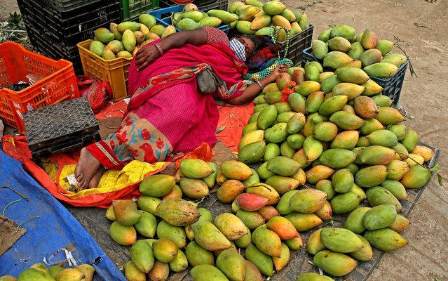A woman taking a nap on mangoes at city market area after the city eased the lockdown in Bangalore, India 12 July 2021. The Karnataka government eases in covid-19 related lockdown restrictions in the wake of lower coronavirus cases and positivity rate falling below 5% percent. The Karnataka state government administering record 2.5-crore doses till date since the vaccination drive was launched across the state on January 16, Karnataka ranked first in South India in inoculating maximum number of its eligible population, said state Health Minister K. Sudhakar. (Photo by Jagadeesh N.V./EPA/EFE)